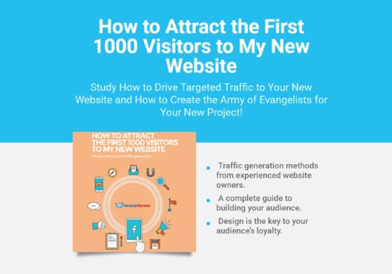 how-to-attract-the-first-1000-visitors-to-my-new-website